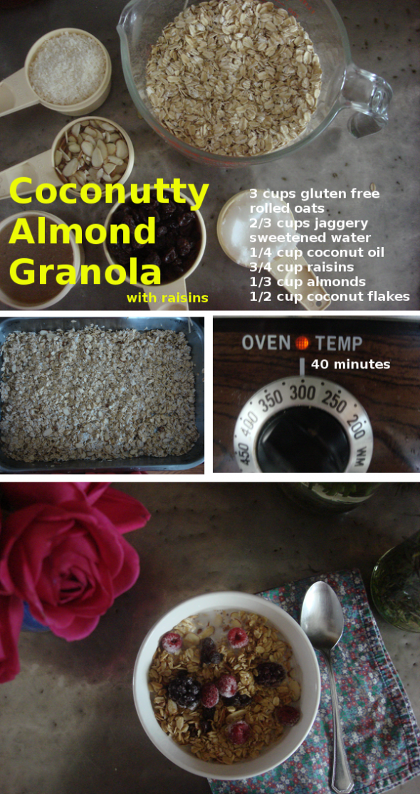 coconutty almond granola
